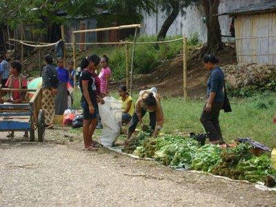 # 3: Repubblica Democratica di Timor-Leste