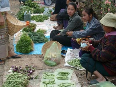 # 8: Laos