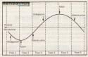 ciclo economico 24/12/2008