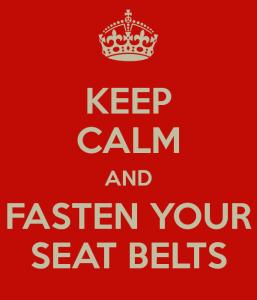 euro-seatbelts