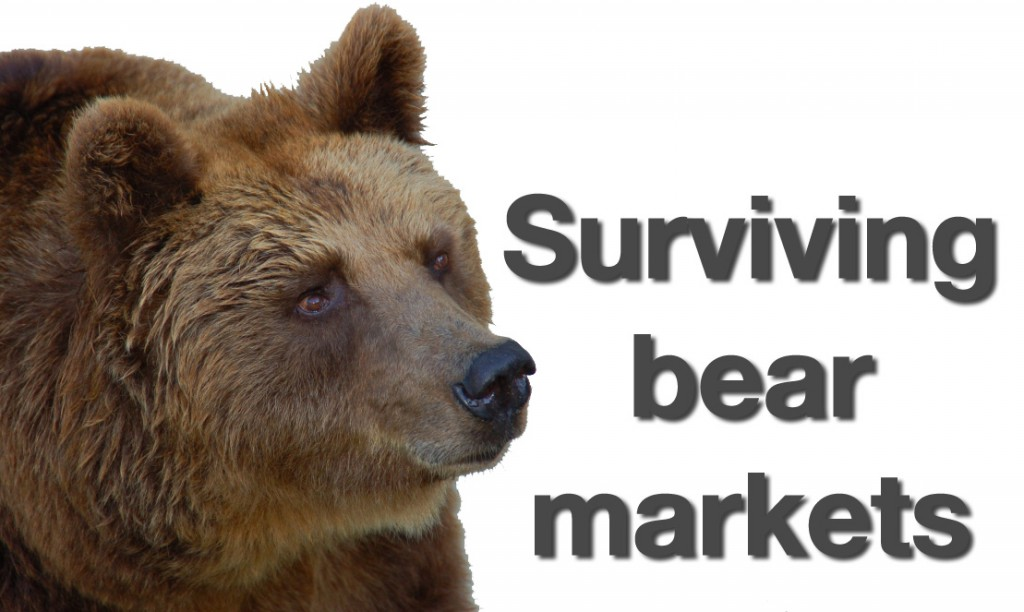 riding-the-bear-market