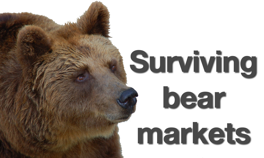 riding-the-bear-market